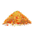 pile of fallen leaves vector image vector image