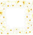 white crocus flower border vector image vector image
