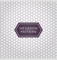 geometric line hexagon pattern background and vector image vector image