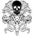hand drawn surreal composition with human skull vector image vector image