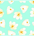 white crocus flower on green mint background vector image