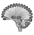 diagram human brain in vertical section vintage vector image vector image