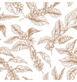 elegant seamless pattern with coffea or coffee vector image