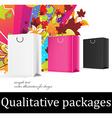 Gift Bag Design vector image vector image