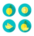 Lemon Flat Icon vector image vector image