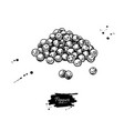 peppercorn heap drawing vintage hand drawn vector image vector image