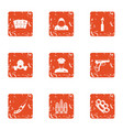 sedition icons set grunge style vector image vector image
