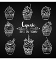 Set decorative hand drawn cupcakes vector image vector image