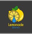 water drop lemon logo design template vector image vector image