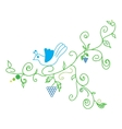 Doodle color abstract vine grape and bird vector image vector image