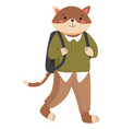 funny cartoon animal student isolated a cat vector image vector image