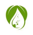 green water drop logo template vector image vector image