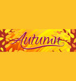 horizontal bright orange banner hello autumn vector image