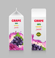 juice carton box 3d pack with grape branch vector image vector image