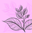 leaf drawing art pattern on a pink color scene vector image vector image