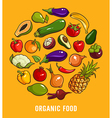 Set of organic food vector image vector image