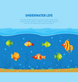underwater life banner template with space for vector image