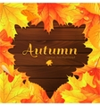 autumn background with maple leaves vector image vector image