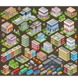 Big isometric set of buildings and houses vector image vector image