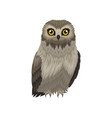 flat icon of great gray owl large wild vector image