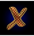 golden and red letter x vector image vector image