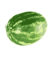 Ripe watermelon isolated on white background vector image vector image