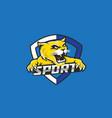 wildcat sport logo design vector image vector image