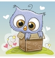 Birthday card with Cute Owl vector image vector image