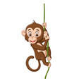 cartoon bamonkey hanging on a tree branch vector image vector image