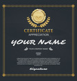 certificate template elegant and stylish with vector image vector image