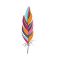 colored large bright bird feather vector image