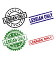damaged textured lesbian only seal stamps vector image vector image