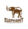 elephant logo design animal logo template icon vector image vector image