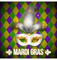Gold and white carnival mask on colorful vector image vector image
