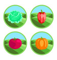 icons of vegetables in color vector image