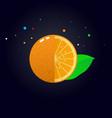 juicy orange slice vector image vector image