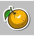 OrangeSticker vector image vector image