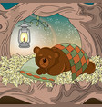 dreaming bear animal set vector image