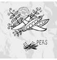 Hand drawn peas vector image