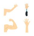 hand icon set flat style vector image