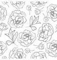 outlined peony flower buds and leaves pattern vector image