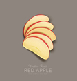 red apple slices isolated vector image