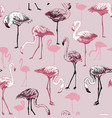 seamless pattern with flamingo birds vector image vector image