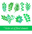 set floral collection with leaves vector image vector image
