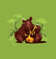brown bear eat sweet honey vector image