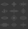 calligraphic lines dividers vector image