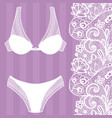 hand drawn lingerie panty and bra set vector image