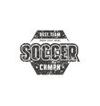 hexagonal template emblem for soccer team vector image vector image