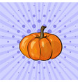 pumpkin pop art comic retro vector image