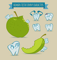 Set of human teeth funny characters with apple vector image